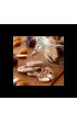 Croquets de Provence Olives de Nyons AOP
