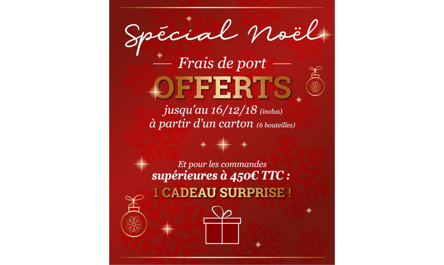 OFFRE SPECIAL NOËL